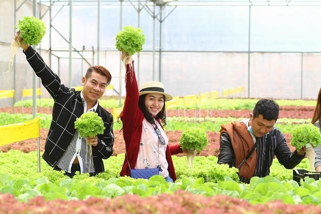 Vườn rau sạch công nghệ cao