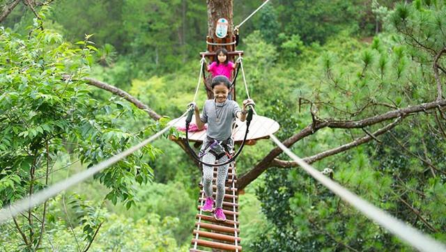 Go through the swinging bridge on the trees