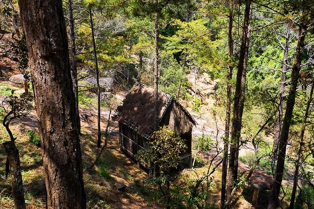 Tiger cave falls area